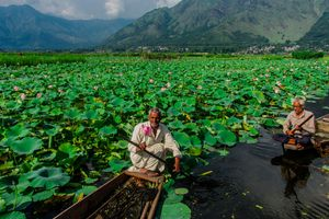 A lovely view of Kashmir