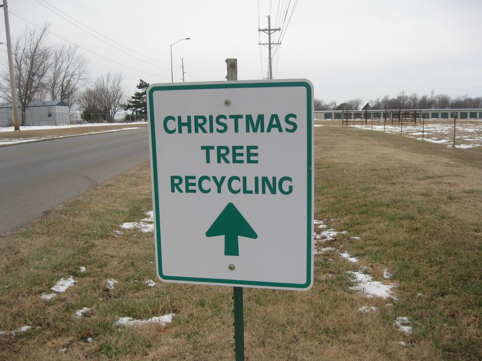 christmas tree recycling dropoff