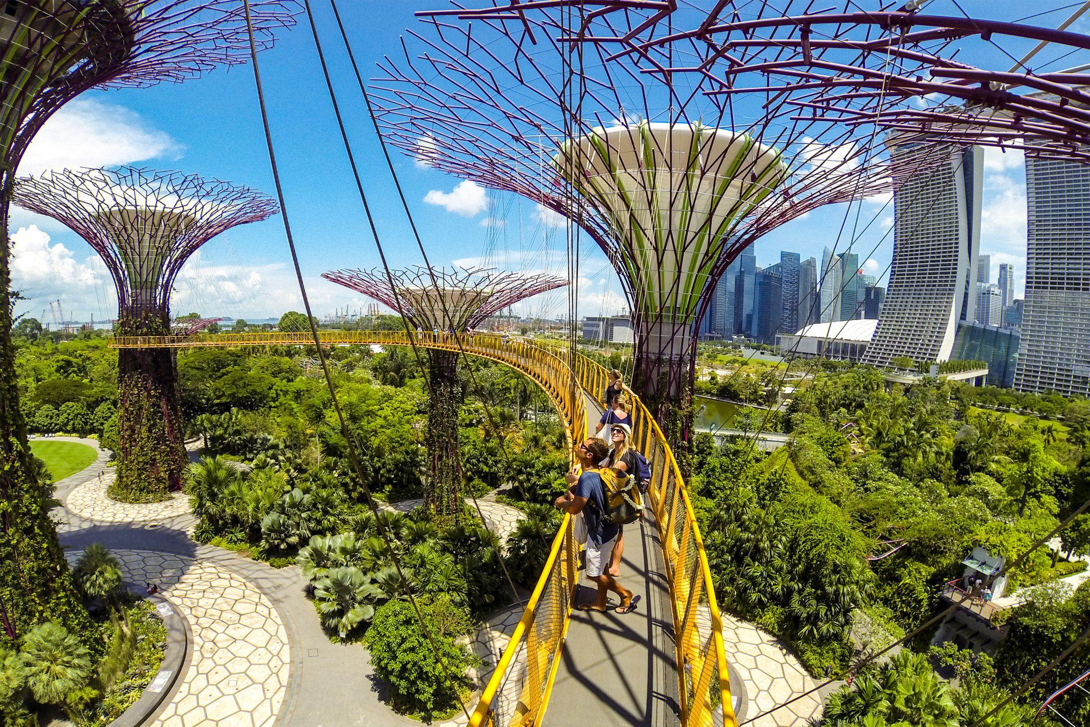 Apa Yang Anda Lihat Dan Apakah Di Gardens Singapura Oleh Bay