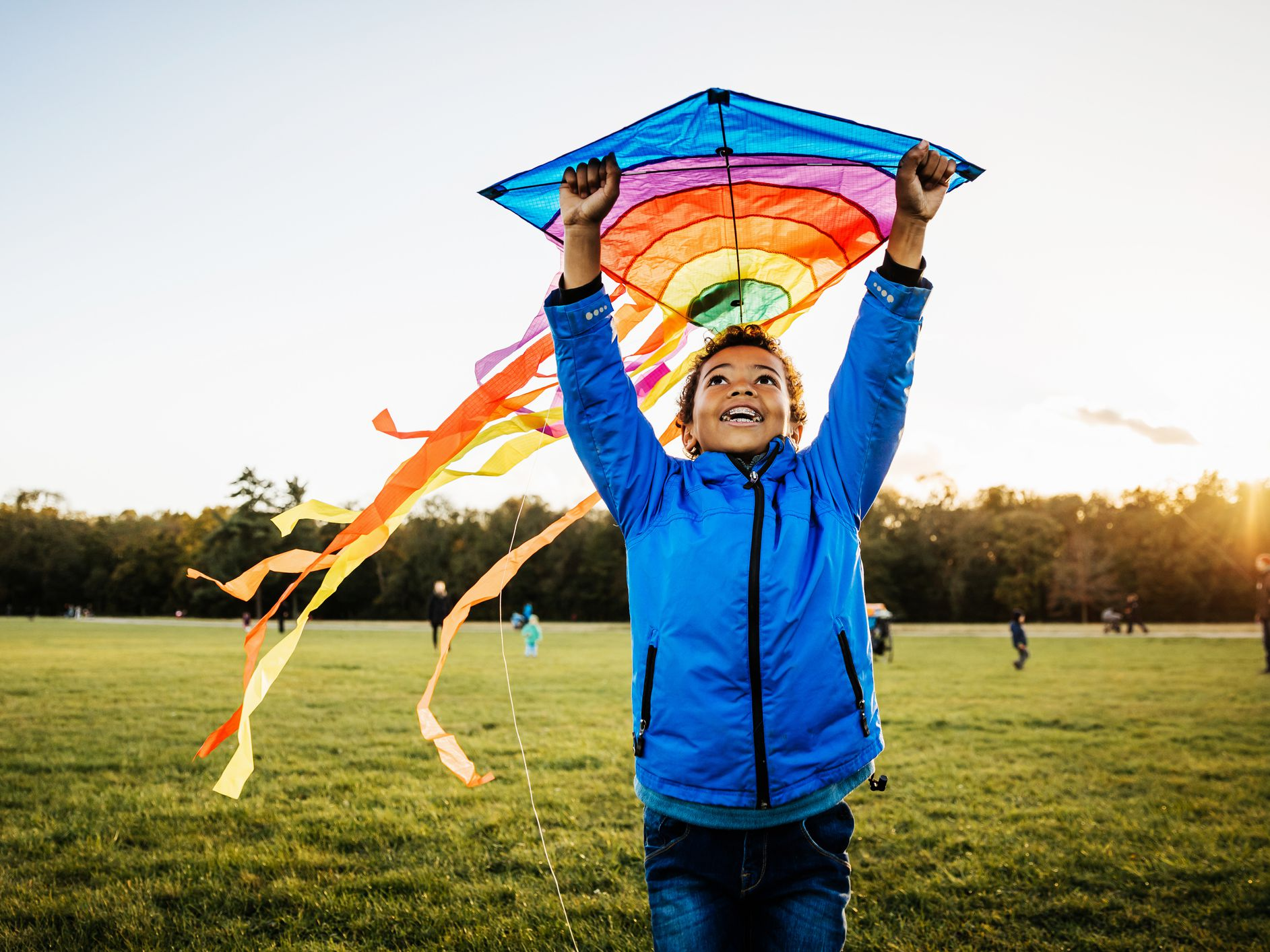 Let There Be Lights And Kites Again >> The 8 Best Kites For Windy Days In 2019