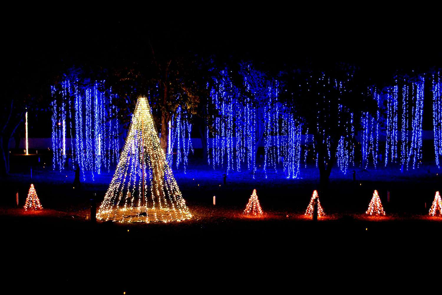 Lights Of Christmas.Where To See Christmas Lights In Nashville