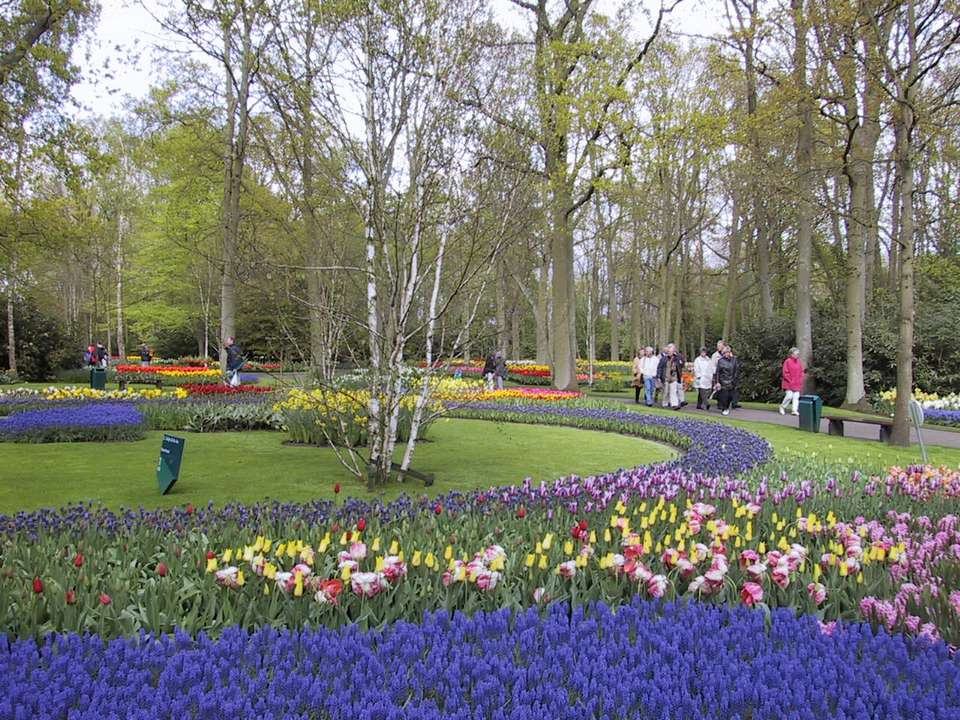 Keukenhof Gardens in the Netherlands - Spring Flowers