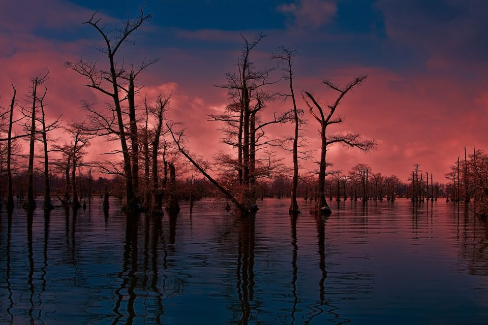 Sunset over a Reelfoot Lake in the winter