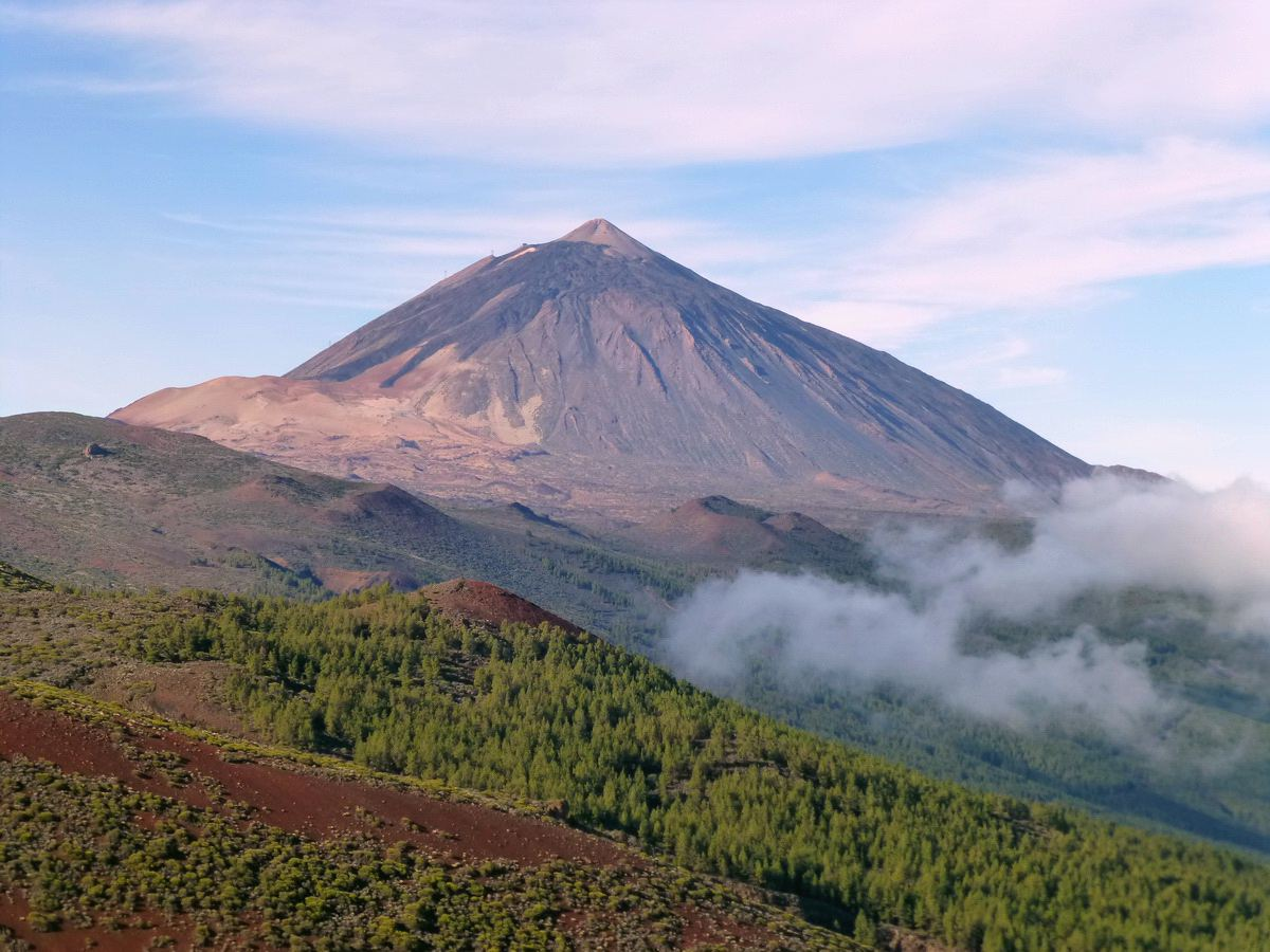Tenerife in the Canary Islands