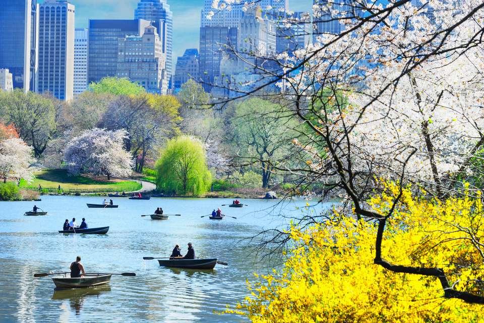 aa0696c769448 All Seasons in New York City