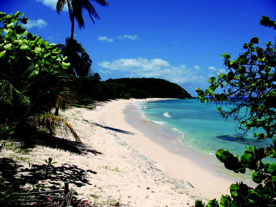 French West Indies Beach