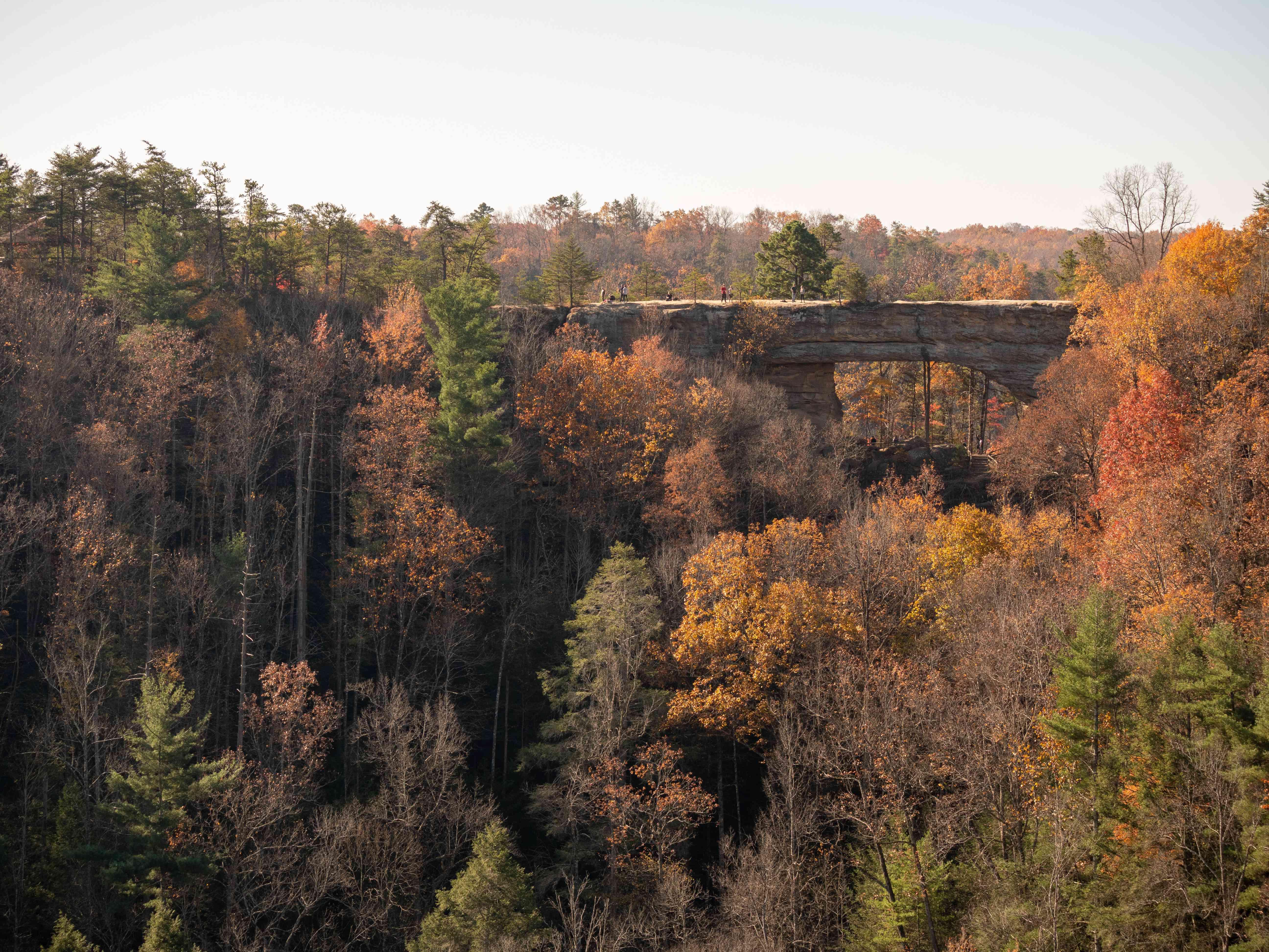 Natural Bridge, Kentucky, in fall