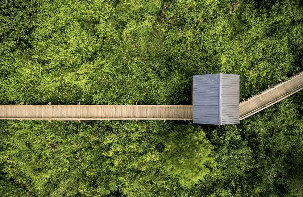 overhead image of a wooden boardwalk and small shack going over a green field