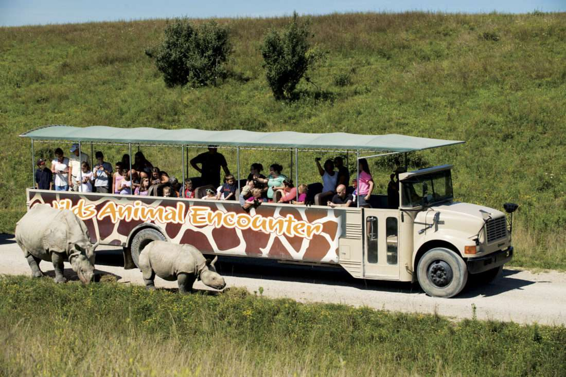 The Wilds Animal Encounter Safari Ride Outside Columbus