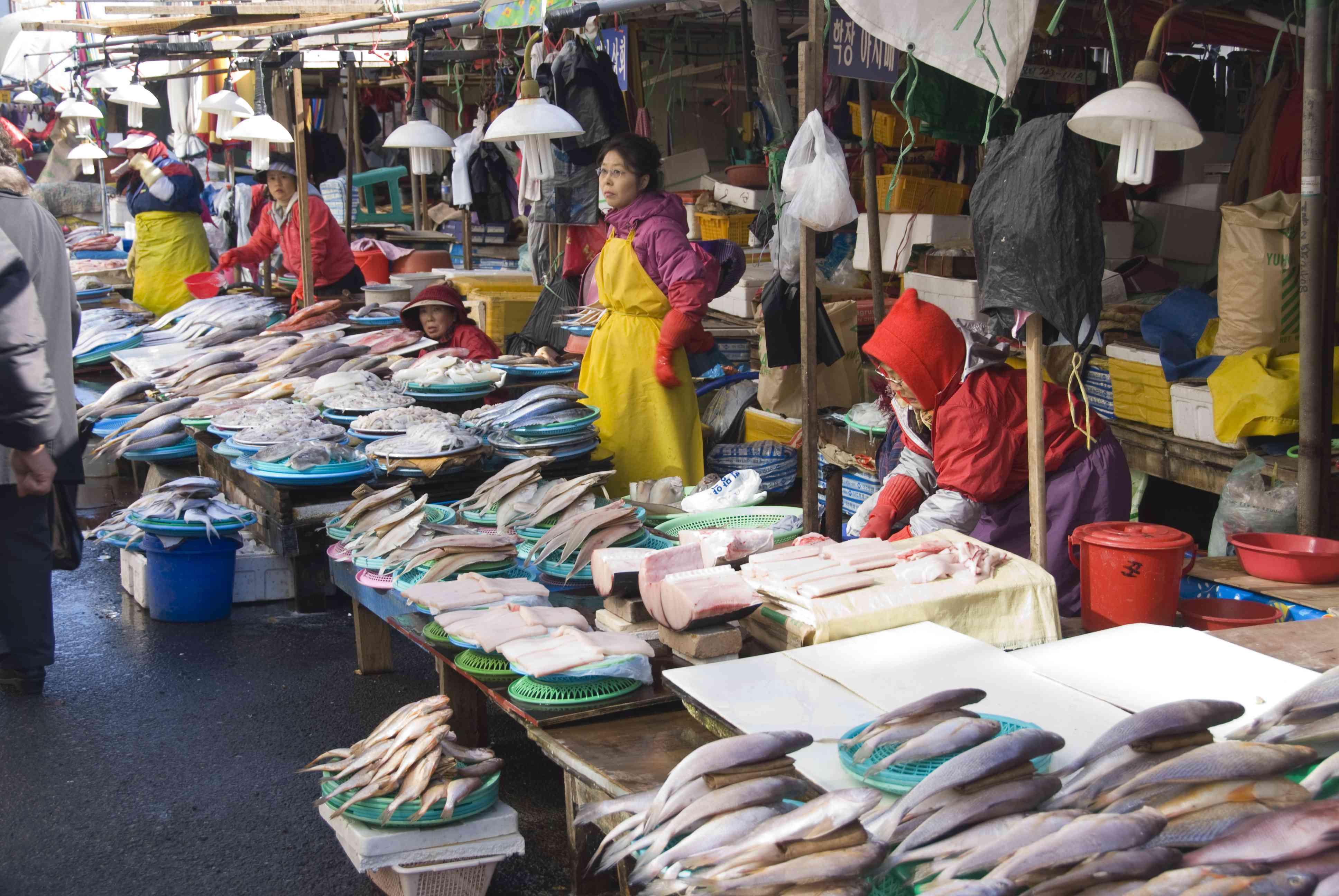 Women selling fish and sea food at Jagalchi Fish Market