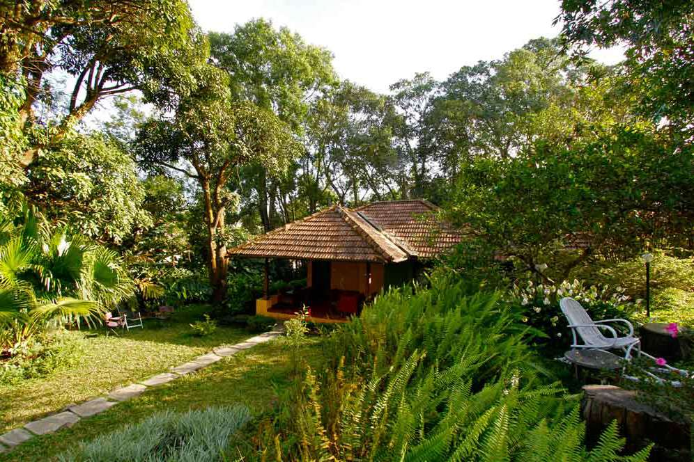 12 Best Homestays in Coorg for All Budgets