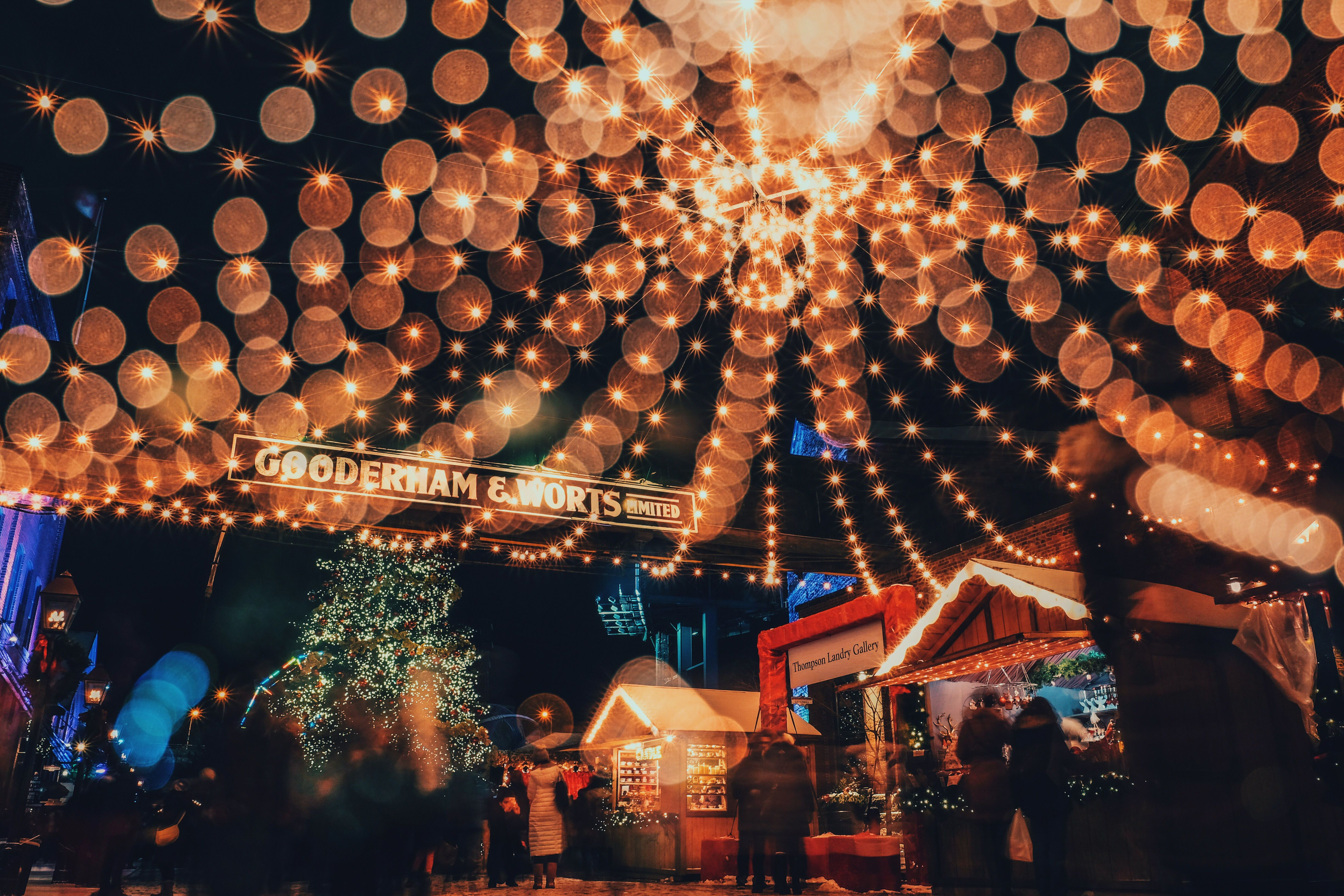 Christmas market with string lights and Christmas trees in Toronto.