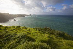 Matauri Bay Northland NZ