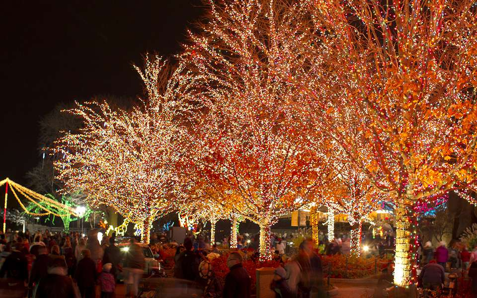 Zoolights en el Lincoln Park Zoo