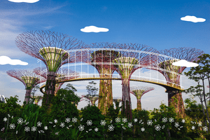 The Super trees in Singapore with illustrated lines and clouds