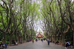 Xiangyang Park, Shanghai, China