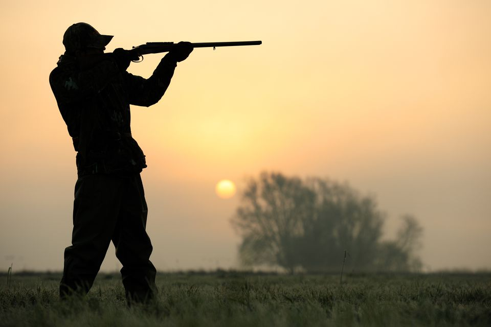A hunter standing in a field, wielding a shotgun.