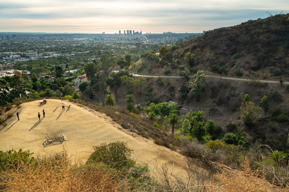 Runyon Canyon Park, a popular hiking area in Los Angeles