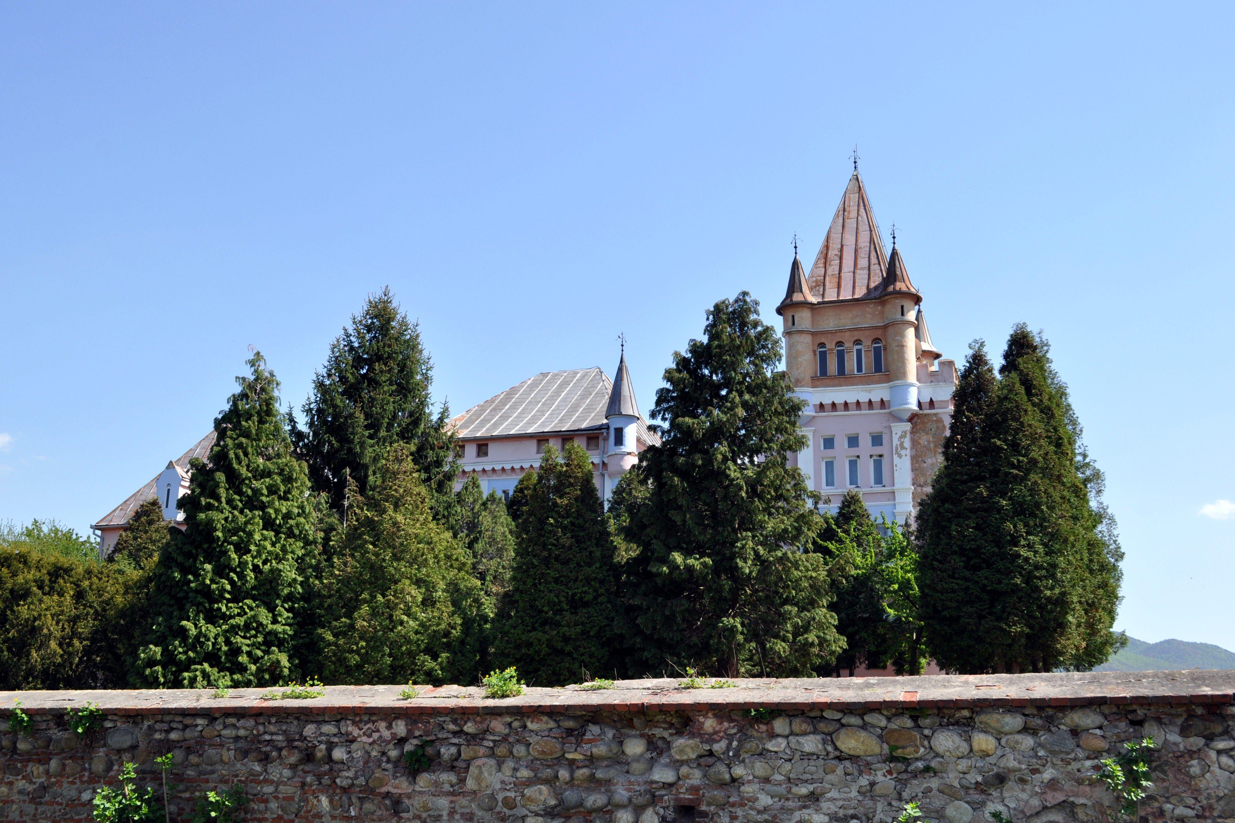 Castillo Kendeffy rodeado de árboles