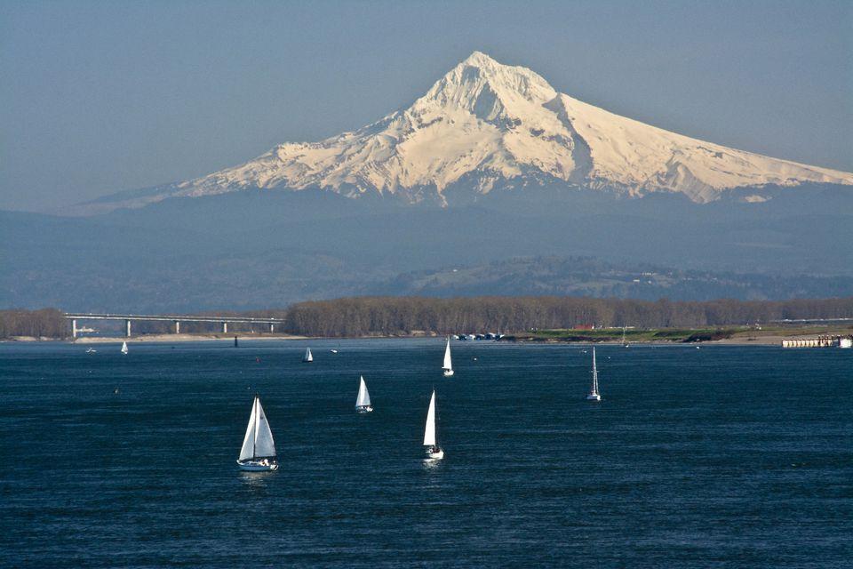 View of sailboats on Columbia River, Mount Hood, Portland, Oregon, USA