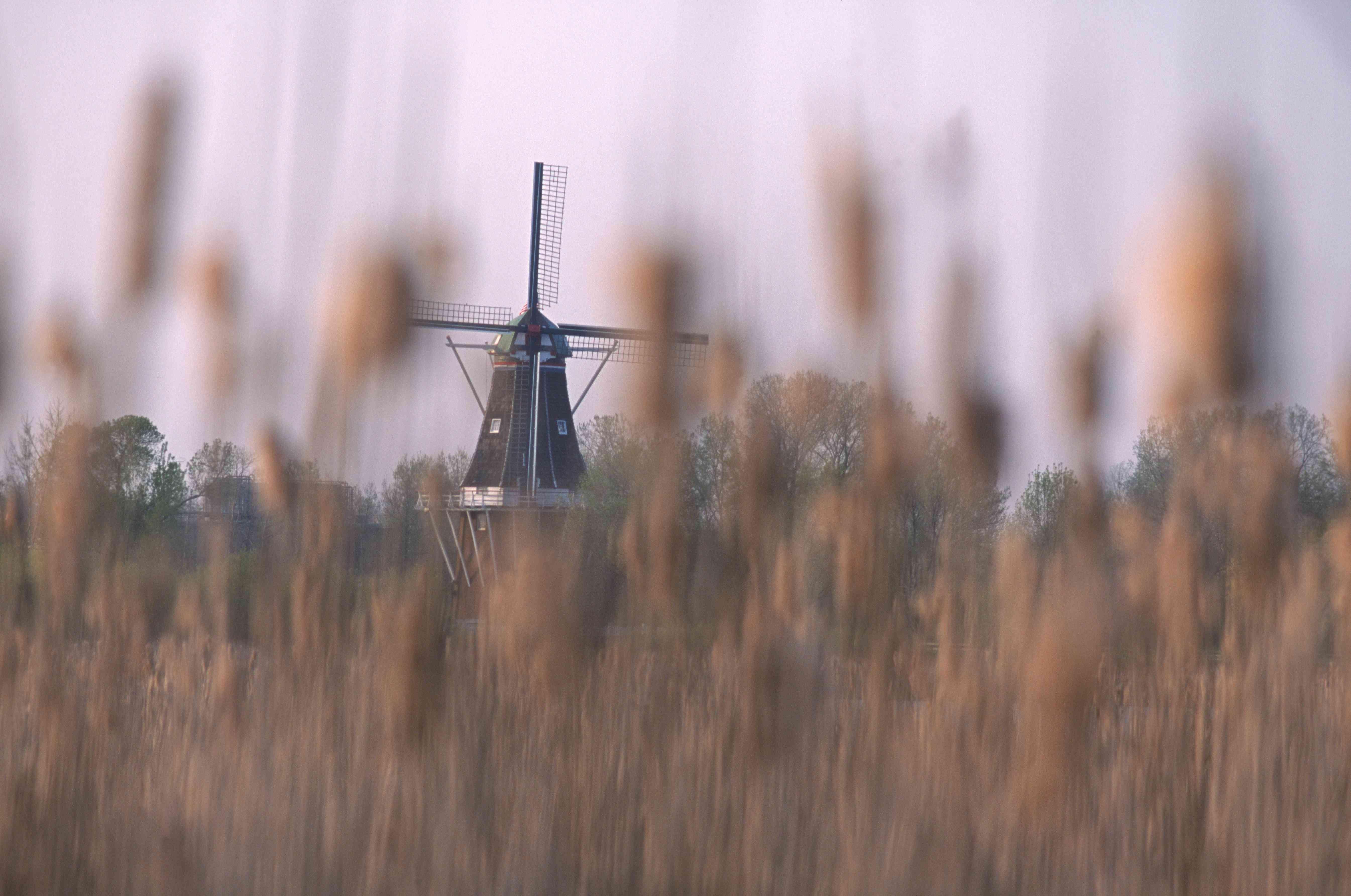 A Dutch windmill in Holland, Michigan.