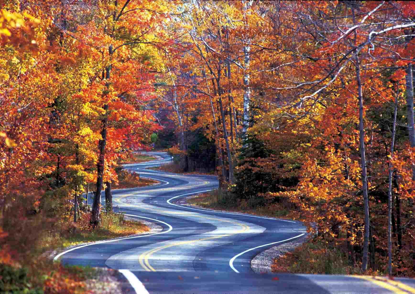 Dimana Cari Kebanyakan Jatuh Foliage Menakjubkan Wisconsin
