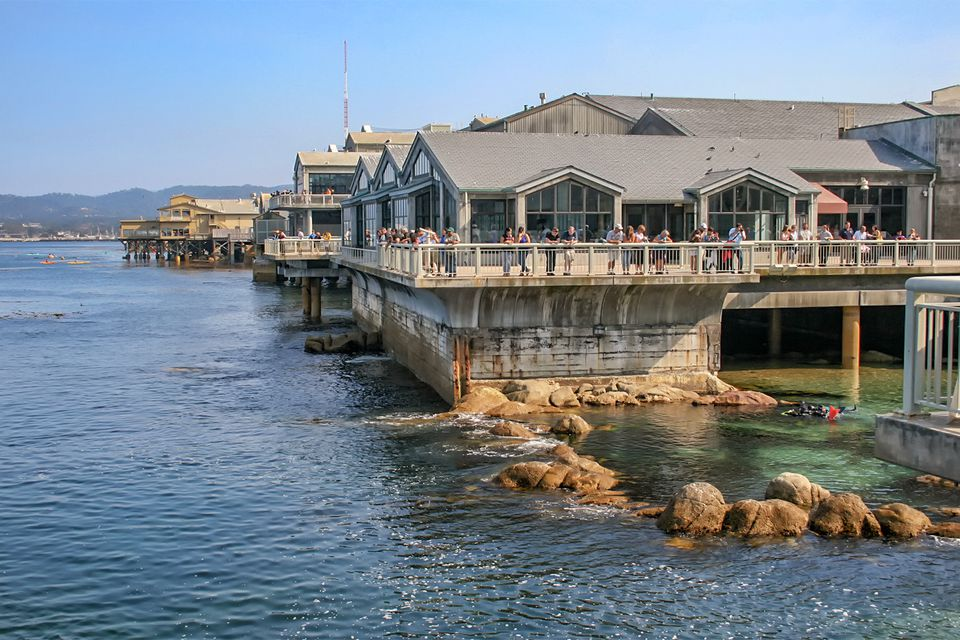 Visitantes en el Acuario de la Bahía de Monterey