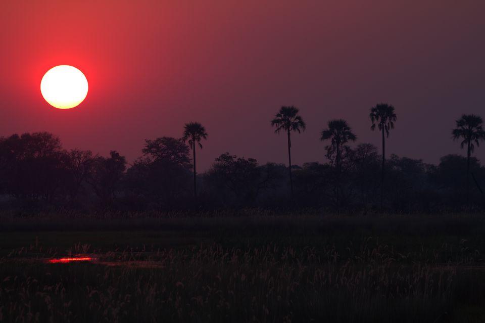 Sunset in Botswana, Africa. Markrosenrosen_Wikimedia.jpg