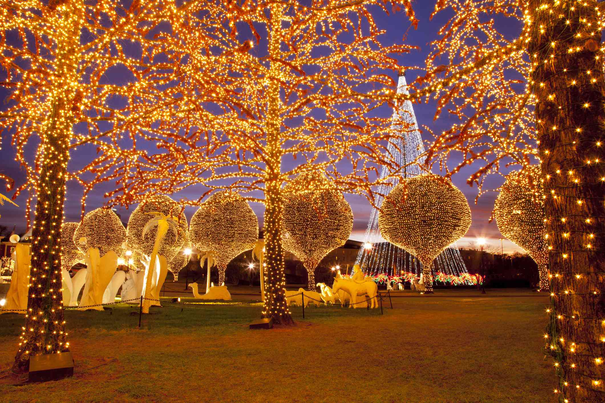 Christmas Lights In Charlotte 2021 Where To See Christmas Lights In Nashville