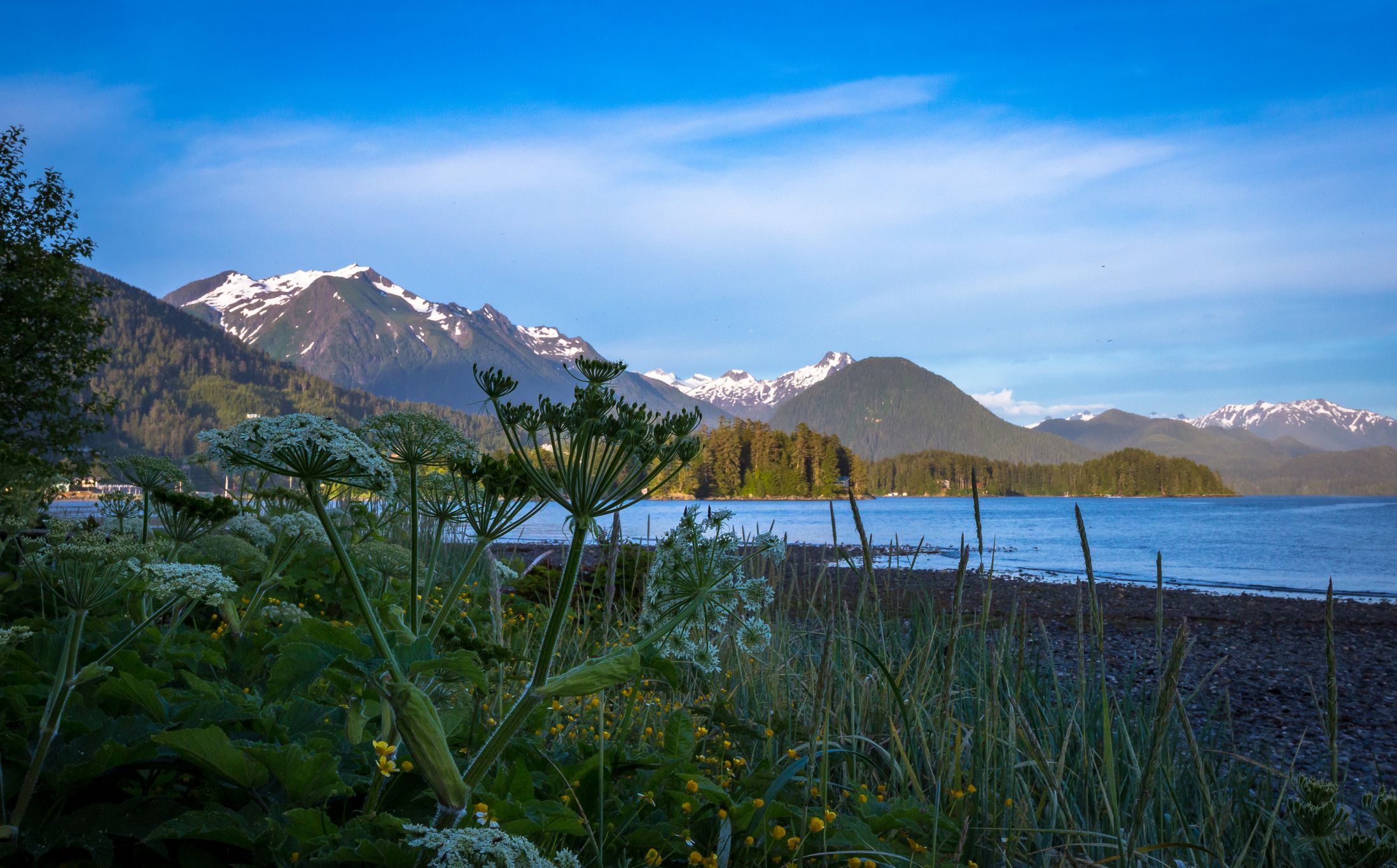 Best Things To Do In Sitka Alaska