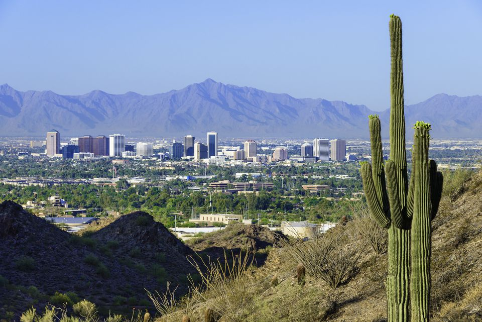 Phoenix skyline and saguaro cactus