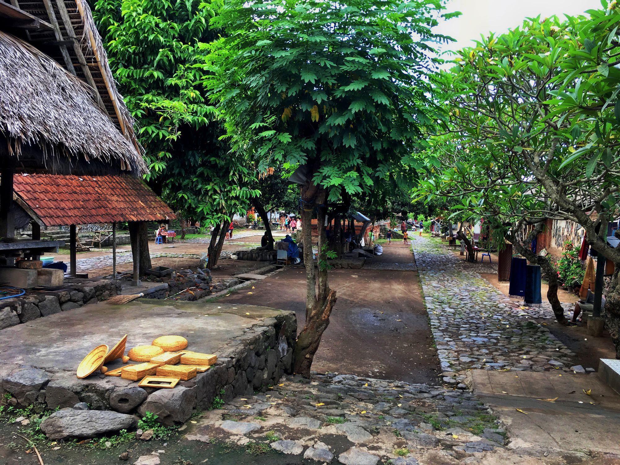 Village scene at Tenganan Pegringsingan, Bali, Indonesia