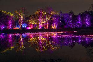 The Morton Arboretum, Illumination