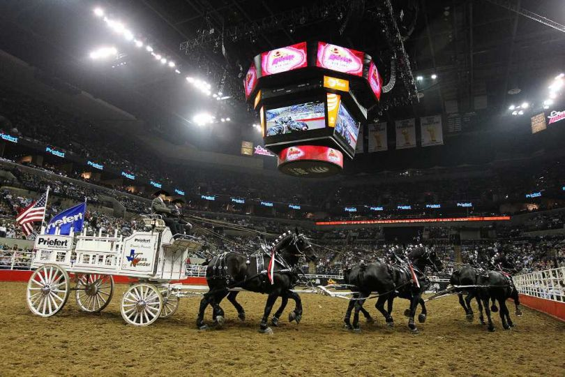 Rodeo de San Antonio