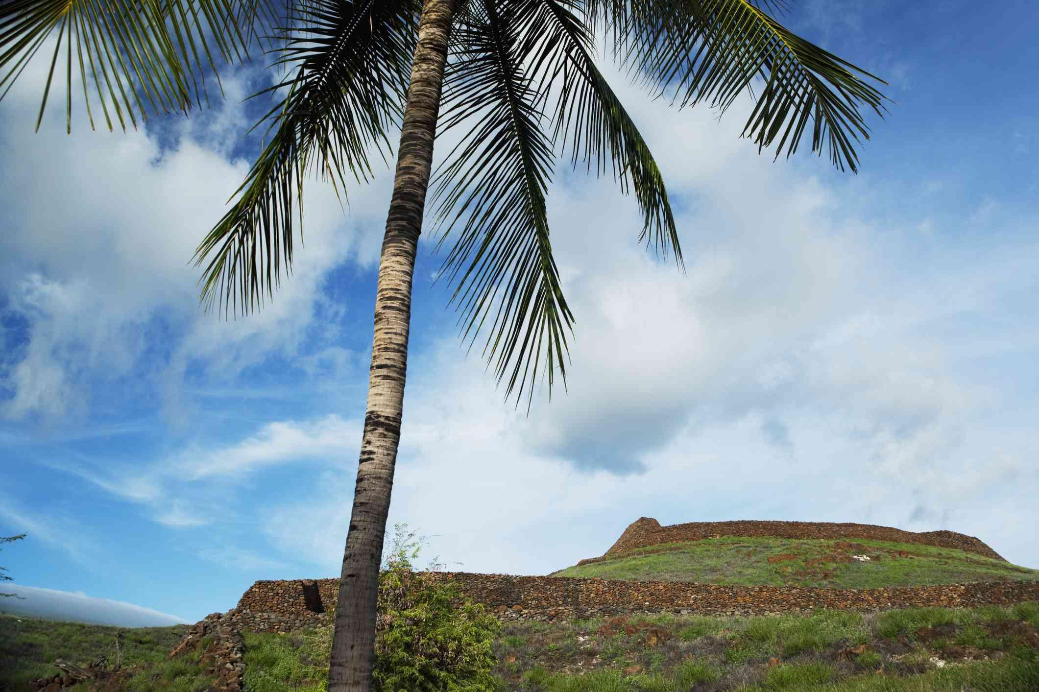 Pu`ukoholā Heiau National Historical Site