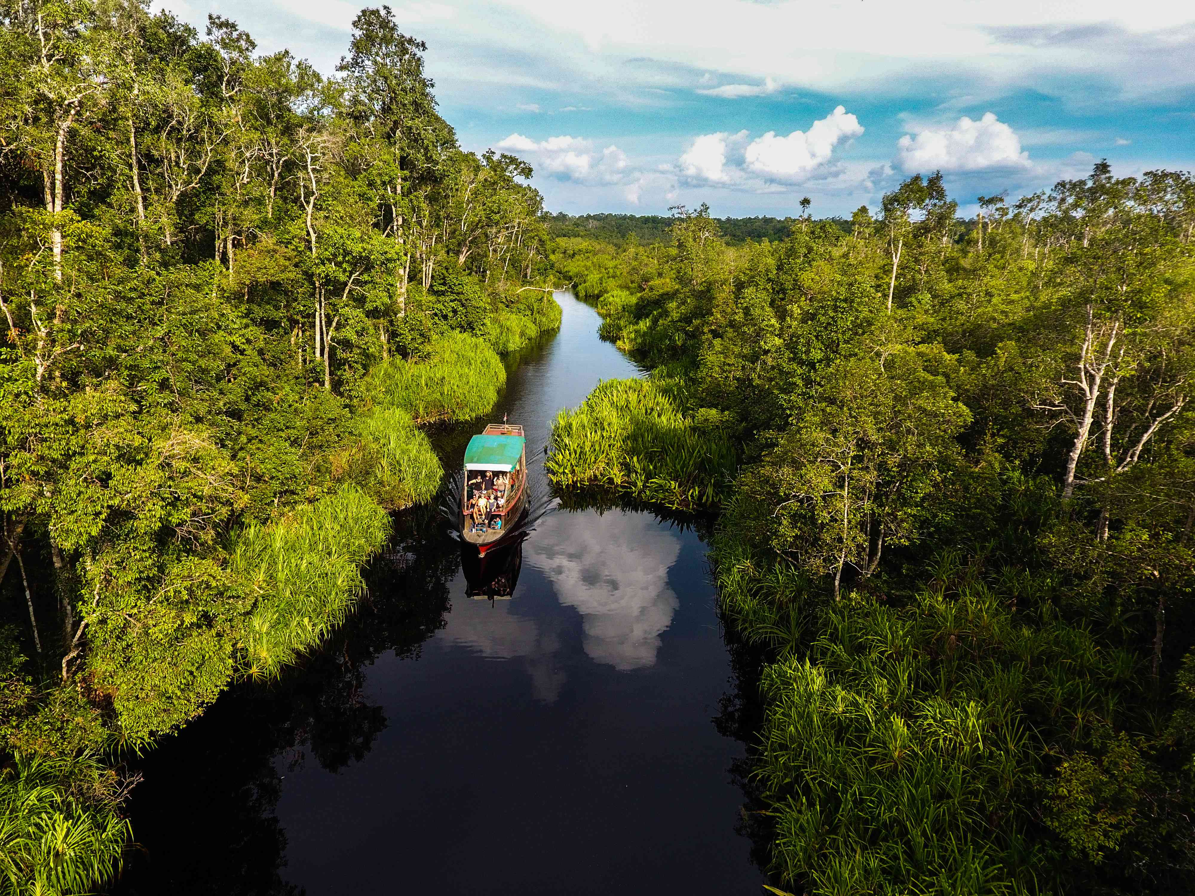 A boat on a river in Borneo