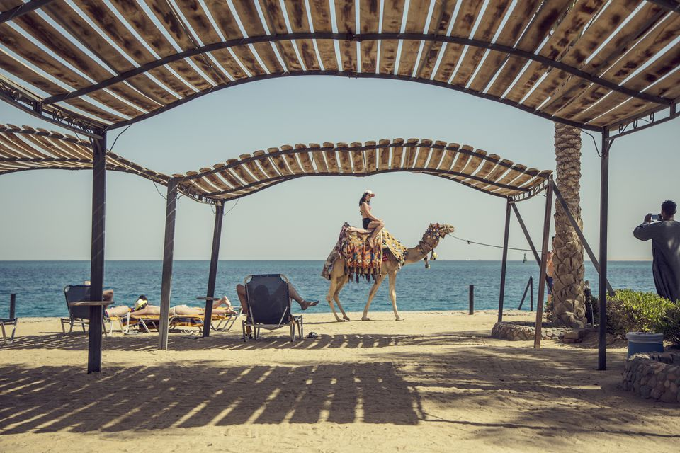 Girl riding on camel on the beach