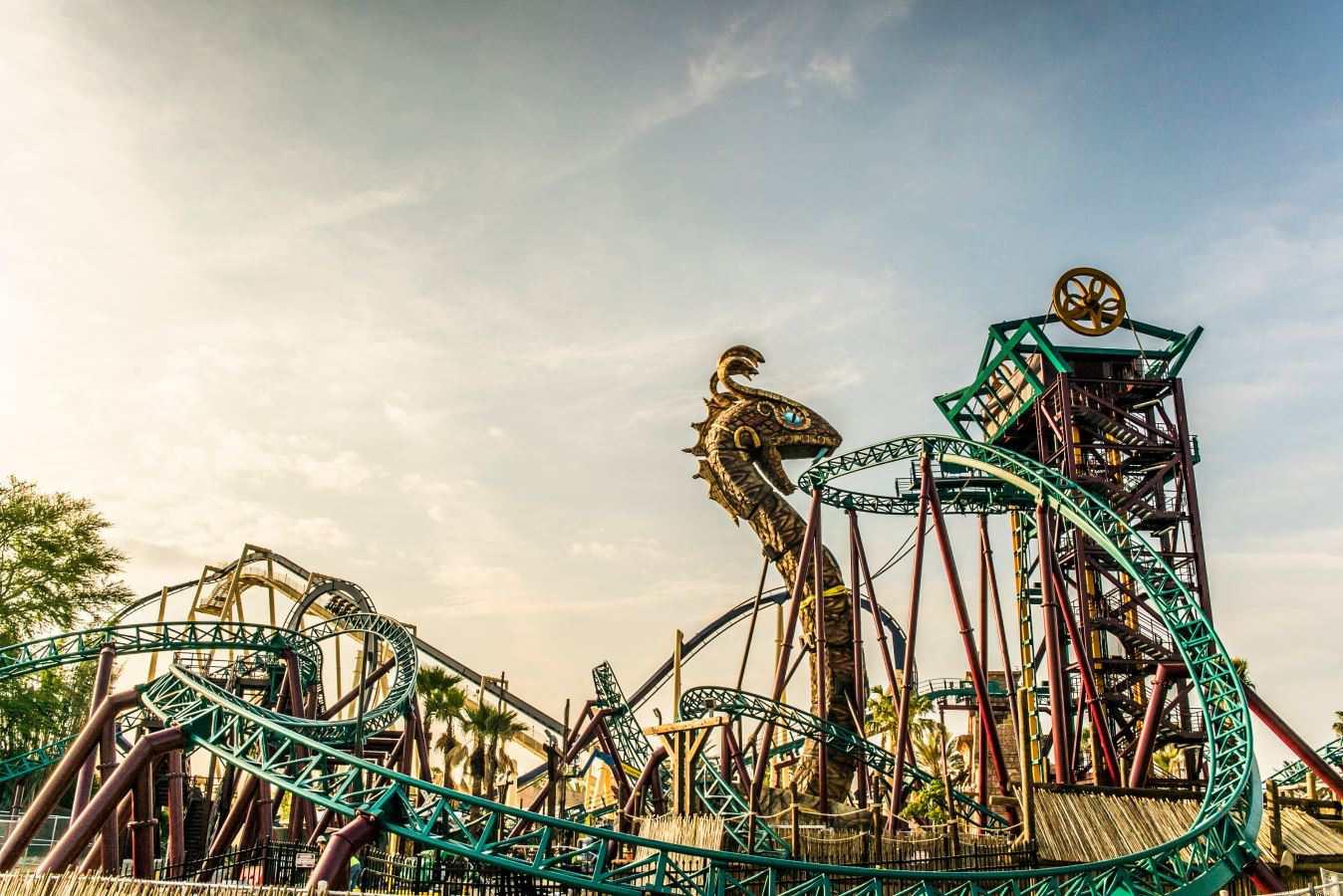 Cobras Curse Busch Gardens Tampa