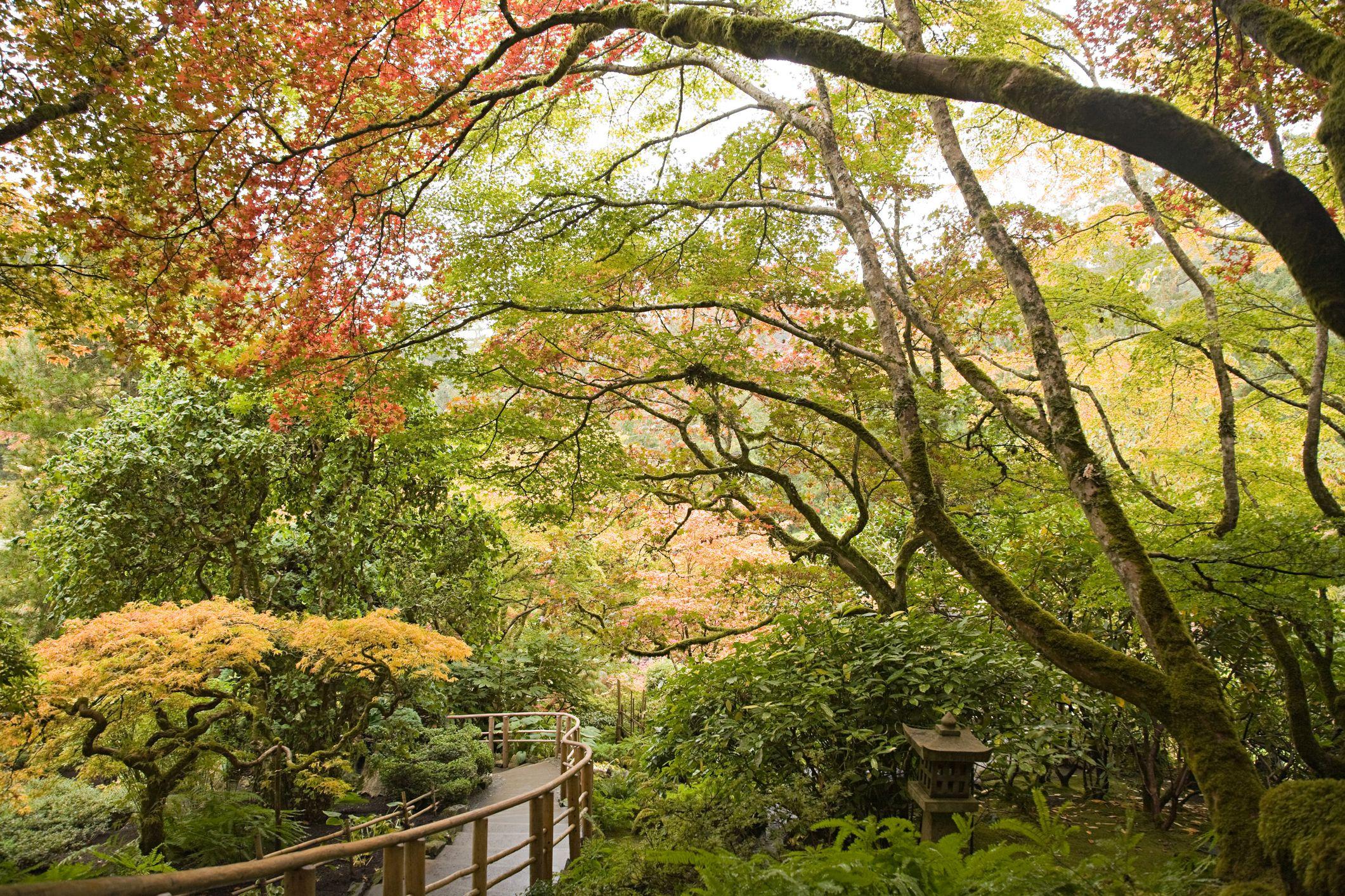 Japanese garden butchart gardens