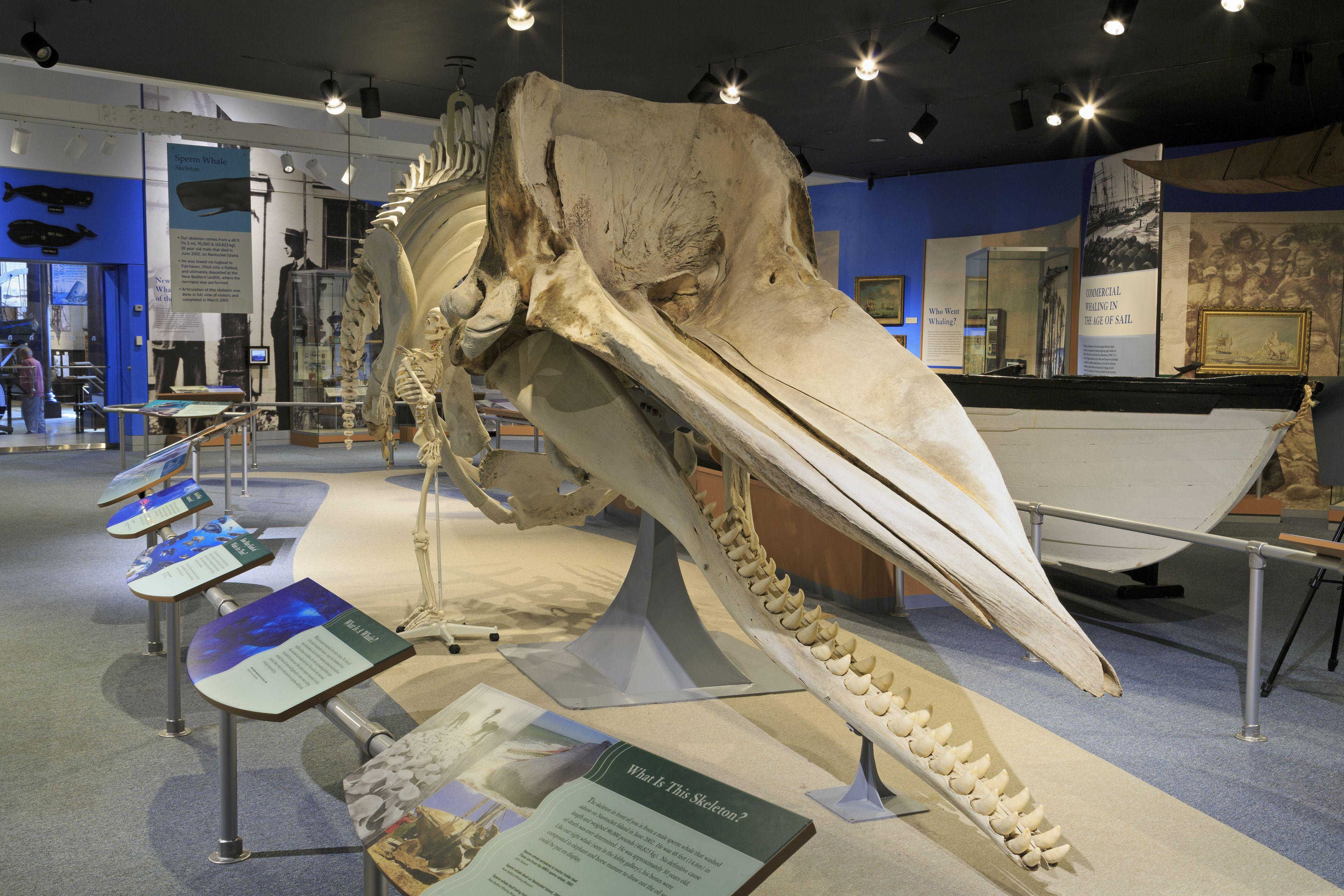 Whaling Museum National Historical Park, New Bedford, Massachusetts, USA