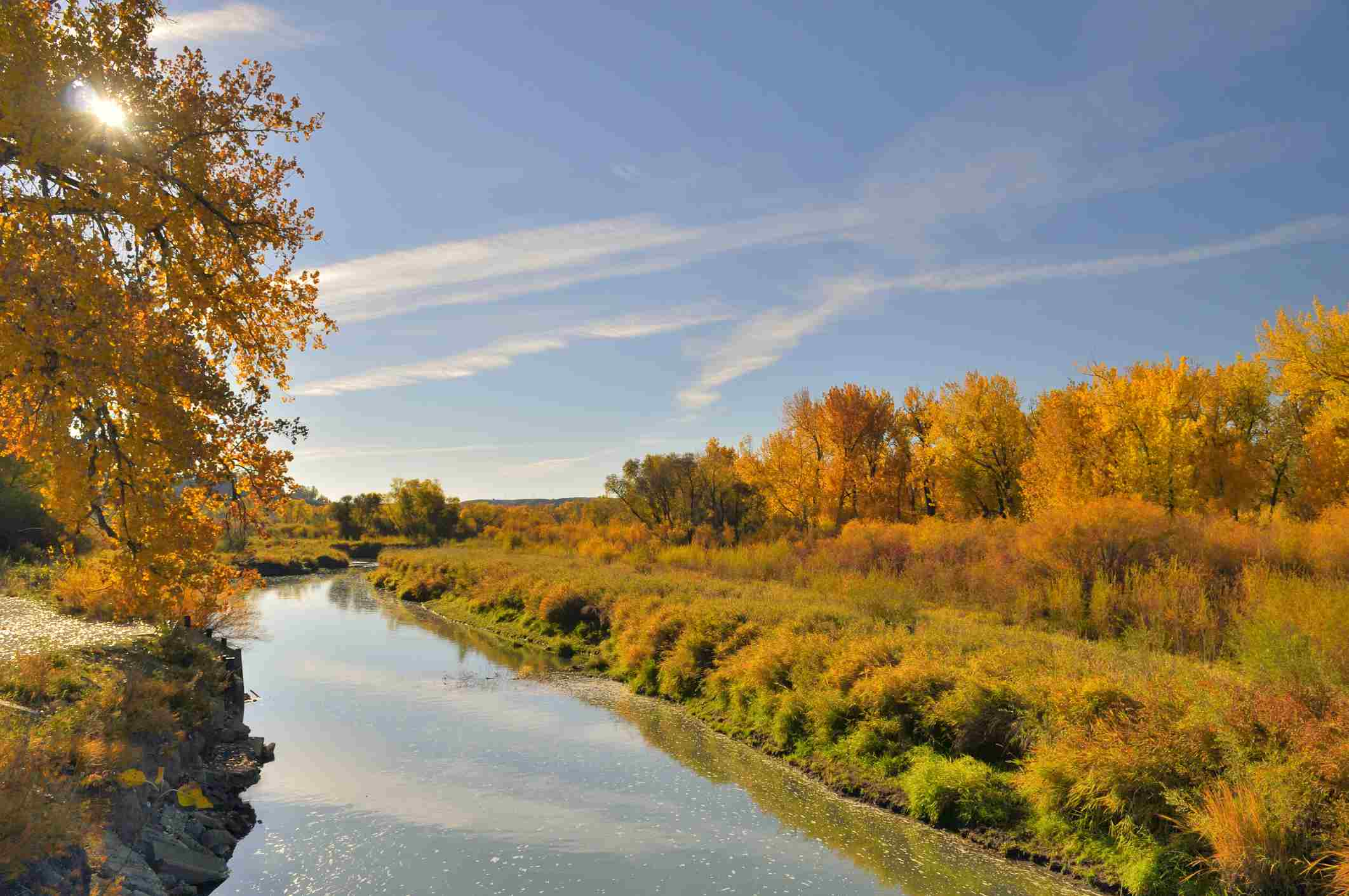 A branch of the Yellowstone River that goes through the Riverfront Park in Billings Montana.