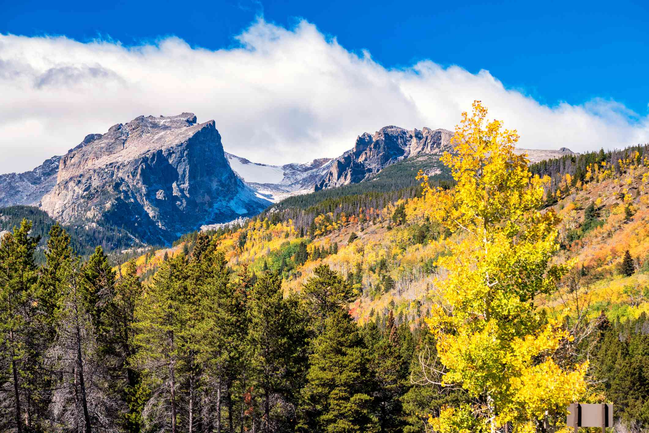 photograph of Hallett Peak and yellow aspen tree in Rocky Mountain National Park Colorado USA on a sunny autumn day.