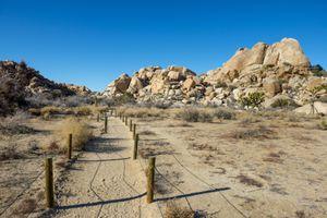 Jumbo Rocks at Joshua Tree National Park