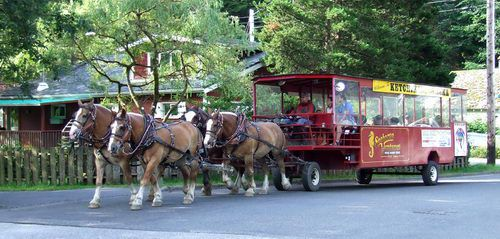 Horse Trolley in Ketchikan, Alaska