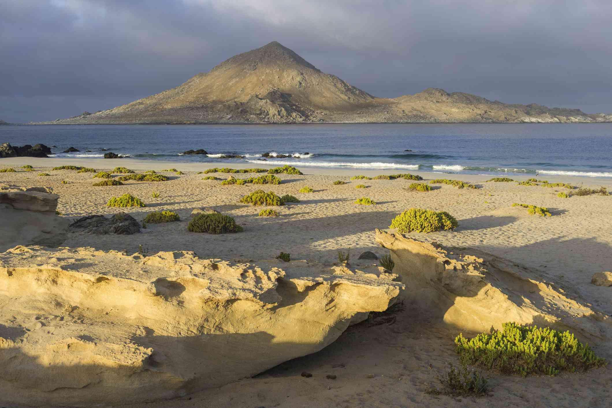 Coast in the morning light, Pan de Azucar National Park, Atacama Region, Chile