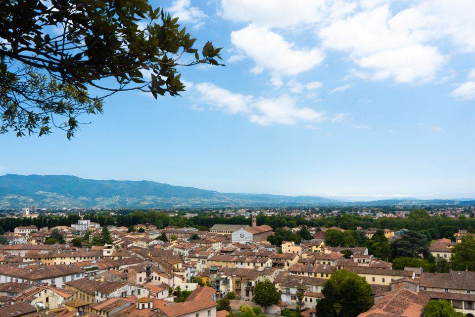 View of Lucca from Guinigi Tower