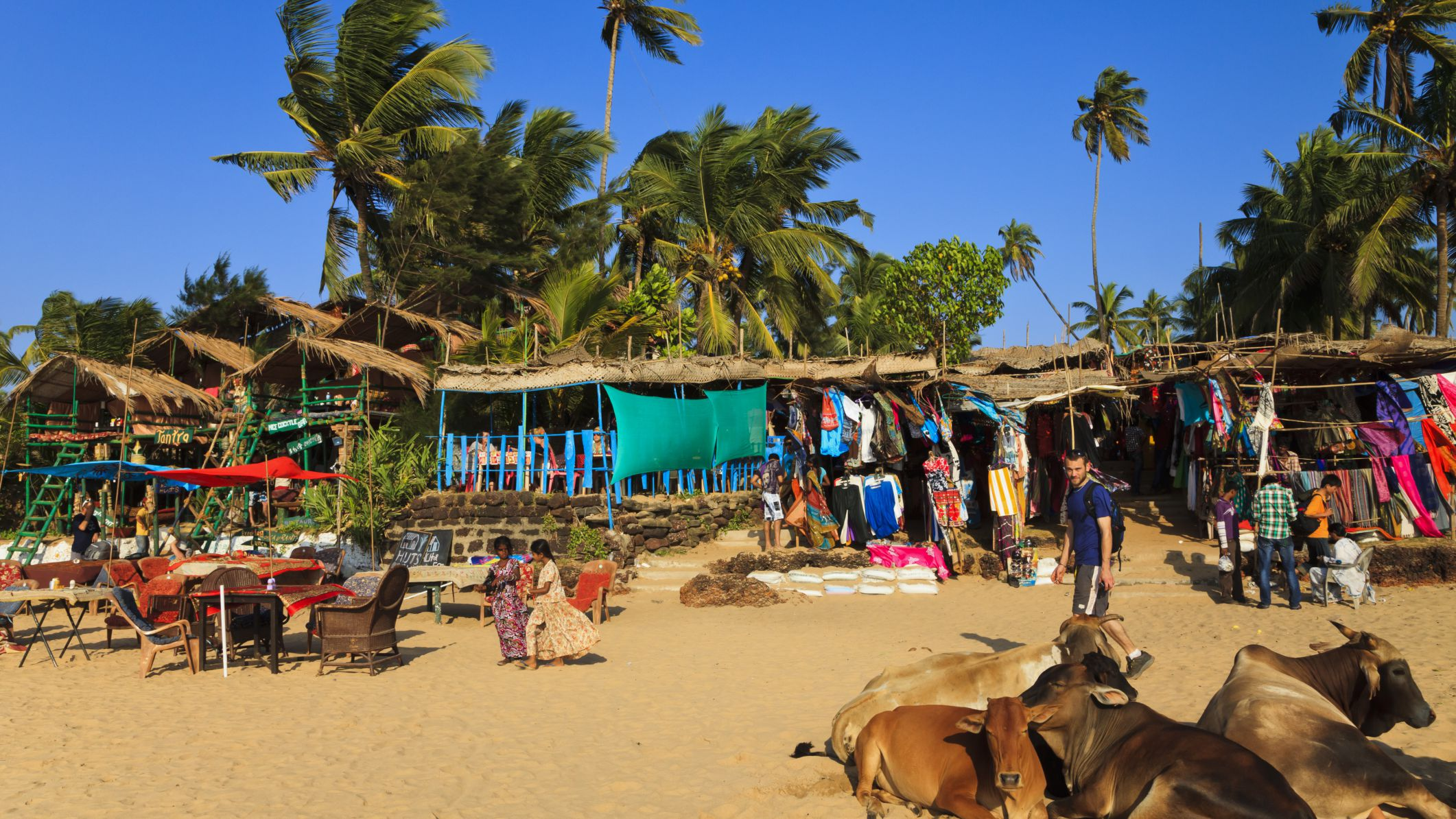 Goa Beach Guide Find Out Which Beach Is Best For You