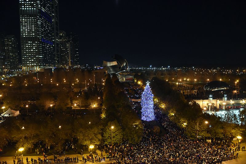 Christmas In Chicago Skyline.Best Chicago Christmas Lights And Displays