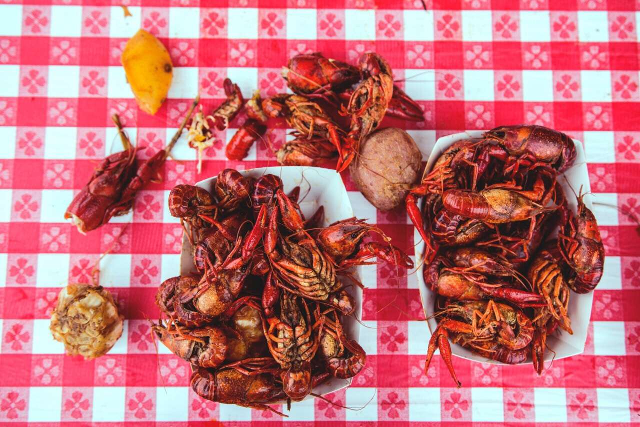 Lobsters and crawfish shot from above on a red picnic blanket