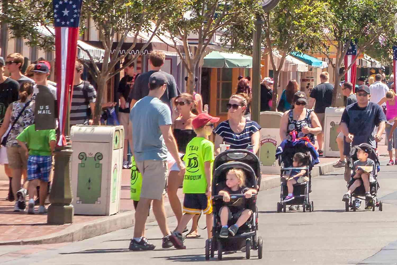 Families at Disneyland